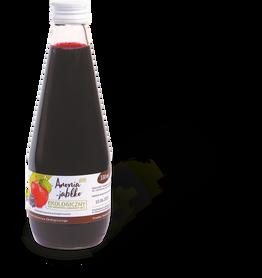 Sok aronia-jabłko BIO 330 ml